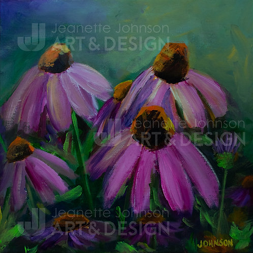 Coneflower Study I - Stretched Canvas Reproduction