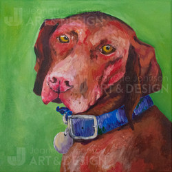 """""""Buddy"""" by Jeanette Johnson"""