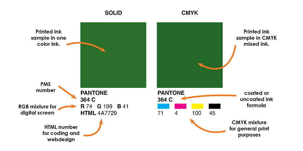 Image describing the different sections of information on a Pantone swatch.