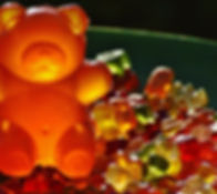 amber-bear-blur-162933.jpg