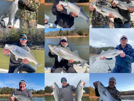 Winter striper fishing is in full swing! Murphy, NC & Blairsville, GA fishing