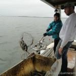 Crabbing-150x150.jpg
