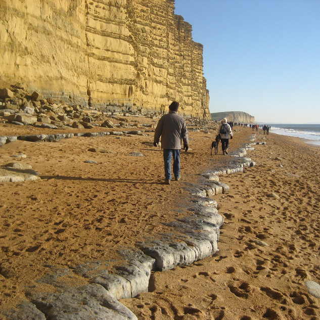 West Bay cliffs to the east.jpg