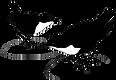 Dippers artwork (2).png