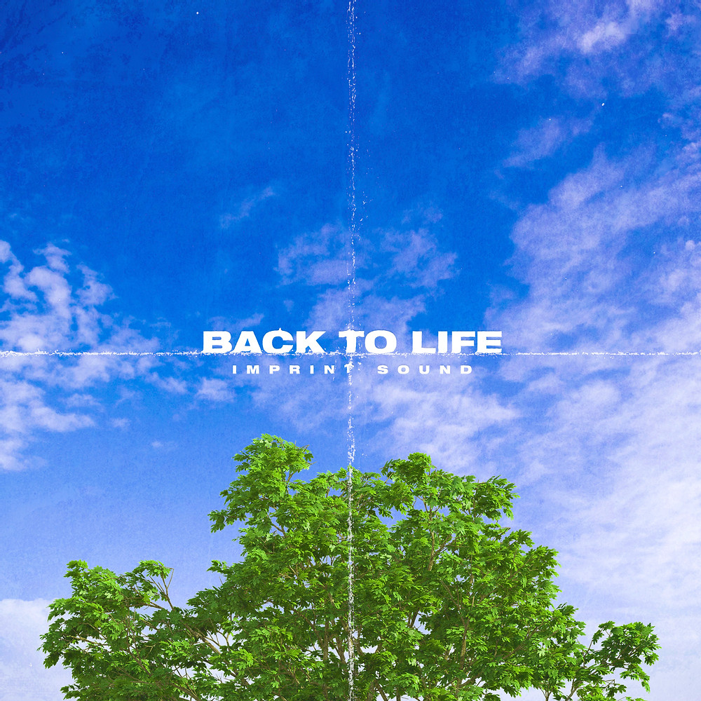 Back To Life by Imprint Sound