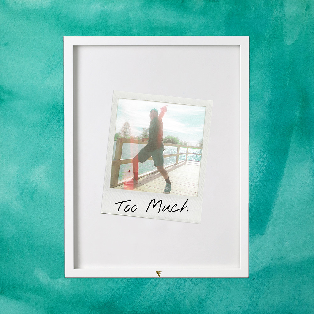 Too Much by Vicious Vic