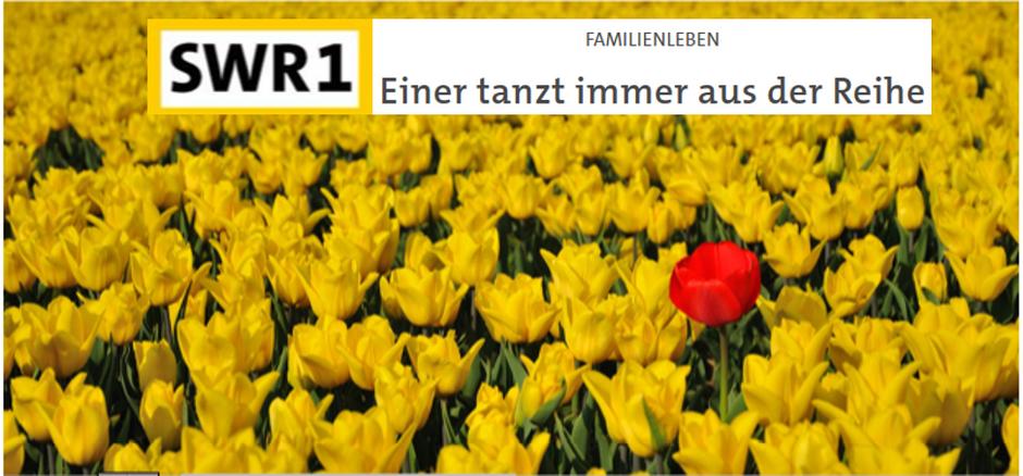 Generationenforscher über den Ausreißer der Familie, Interview mit Rüdiger Maas in SWR1