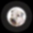 8649_logo_HV_01.png