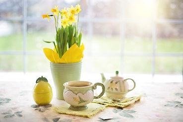 daffodils-1316127_1280.jpg