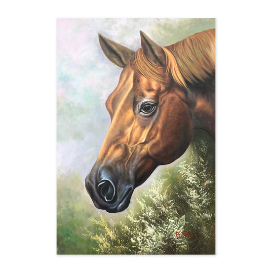 Original Oil on Canvas Realistic Horse  Portrait / Steed by B. Stroud