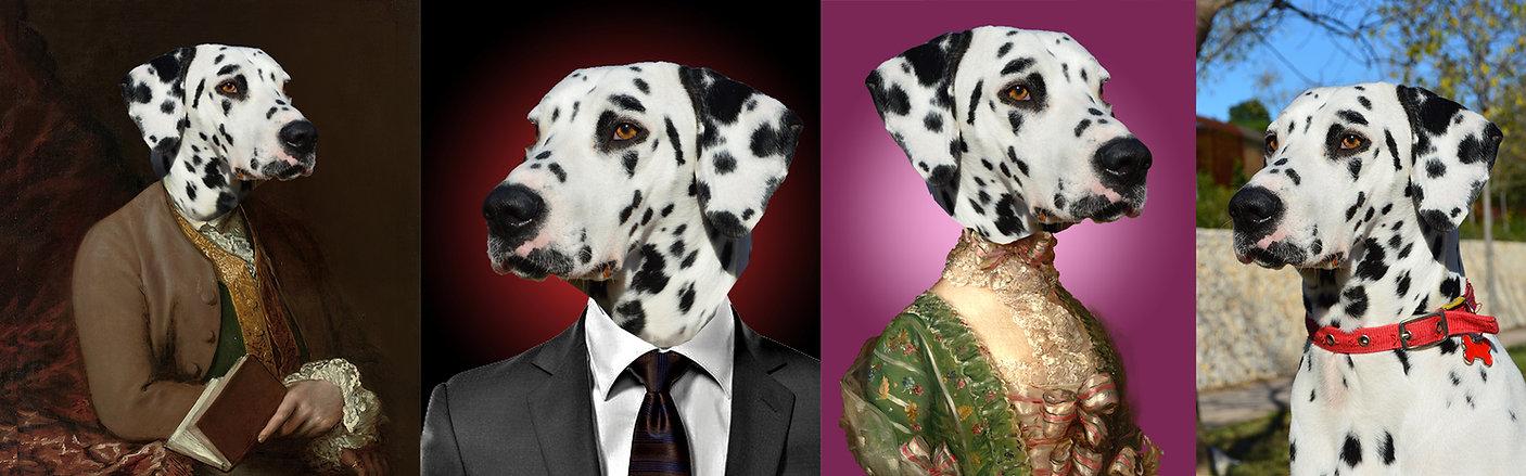 custom Pet Oil Painting design style.jpg