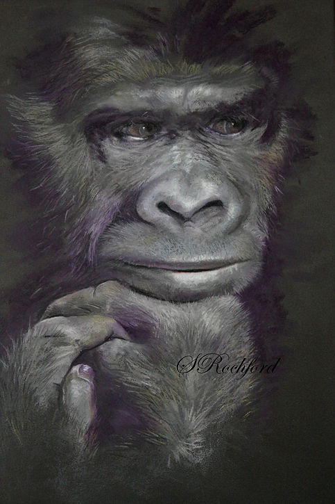 suzart-gorilla-0714_0109-text-web.jpg