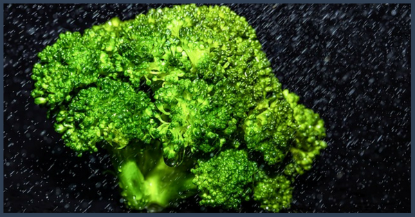 Sizing Up The Super-Foods: Broccoli and Kale