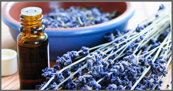 Try Me Recipe: Making Your Own Calming Lavender Essential Oil