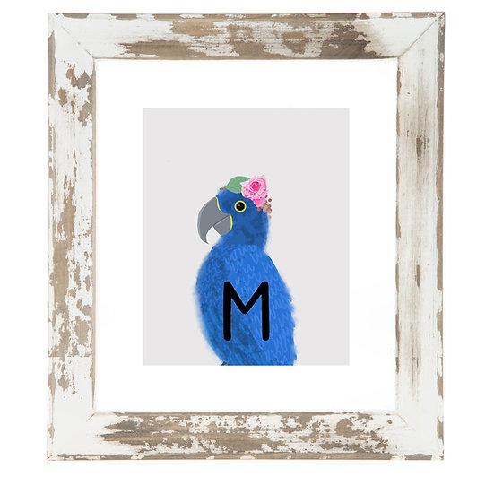 """M"" MACAW 8x10 PRINT (unframed)"
