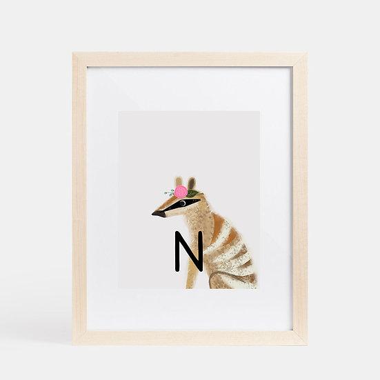"""N"" NUMBAT 8x10 PRINT (unframed)"