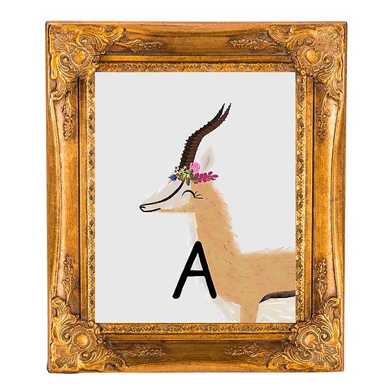 """""""A"""" ANTELOPE 8x10 PRINT (unframed)"""
