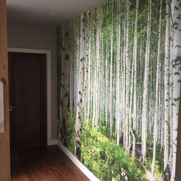 Residential - Wall Graphic