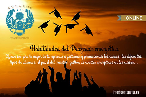 Profesor energético (curso)