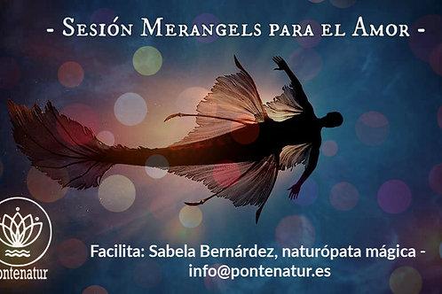 Merangels, sesión