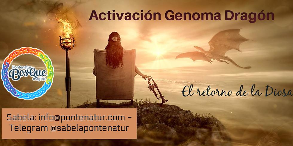 Activación Genoma Dragón