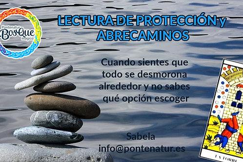 Lectura de protección