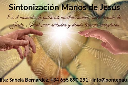 Sintonización Manos