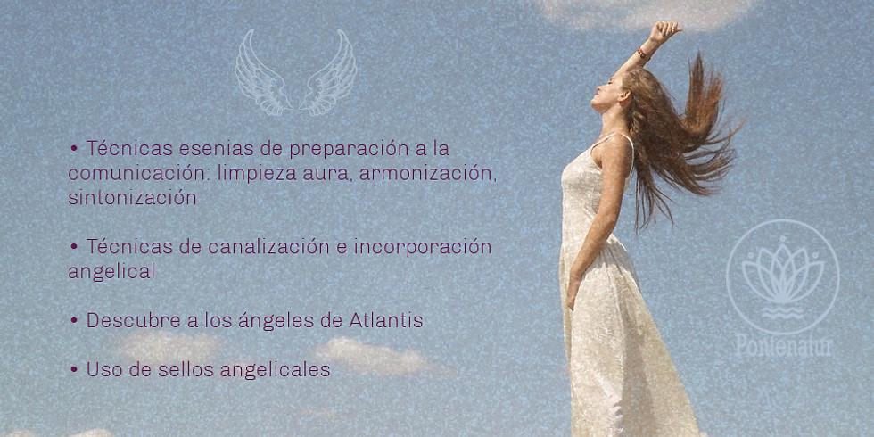 Canalización angelical (taller)