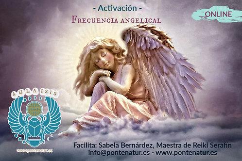 Activación Frecuencia Angelical©