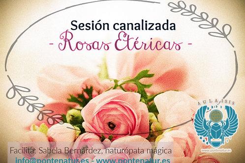Rosas etéricas©, sesión