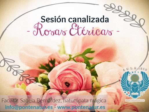Rosas etéricas©