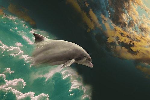 Aharaia, Consciencia Oceánica- sesión