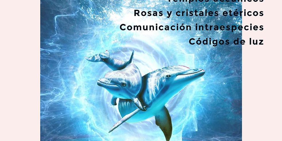 Activación Consciencia Corazones Oceánicos