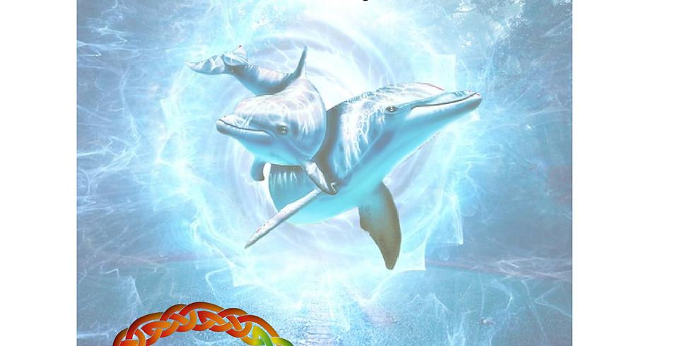 Sintonización Delfines