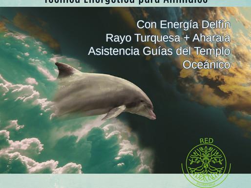 Aharaia© para trabajo energético con animales