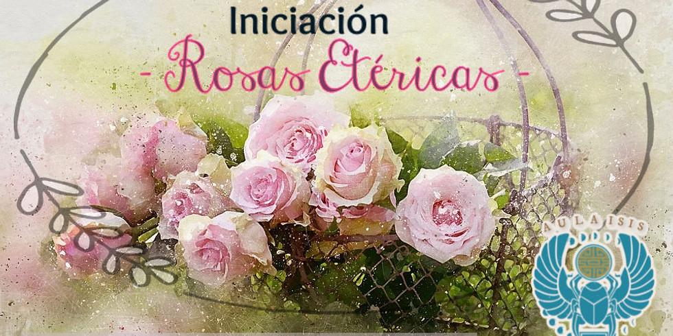 Iniciación Rosas etéricas