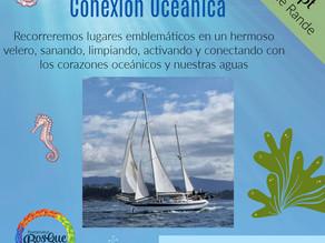 Jornada en velero en conexión marina
