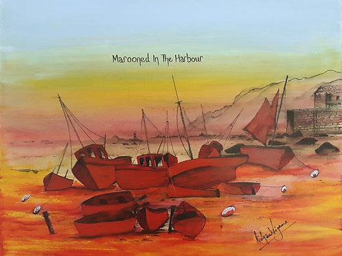 Marooned In The Harbour