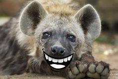 Hyena Magazine.jpg