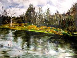 Lardy Pond Horseshoe Clump