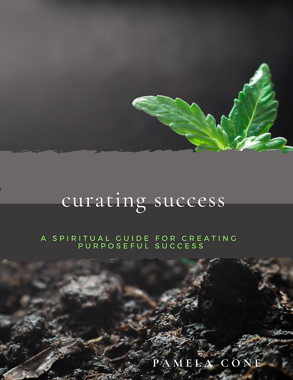 Curating Success Book Cover .png