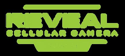 Full-Logo-Green.png