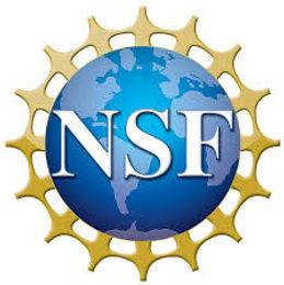 Dr. Chong received NSF Funding.