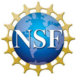 Dr. Chong received NSF Funding.