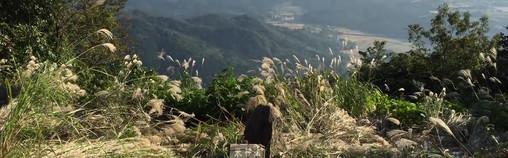 6 Komekakami Mt. Peak View 米神山 山頂.mp4