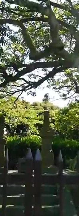 Yokosuka  三浦安針墓William Adams' grave