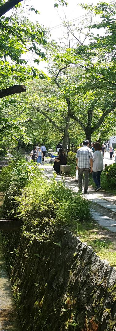 25 Philosopher's Walk or Tetsugaku-no-michi