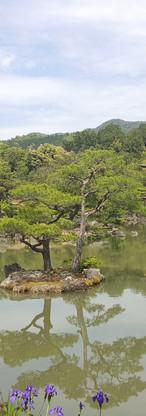 31 Kinkaku-ji Temple or the Temple of the Golden Pavilion