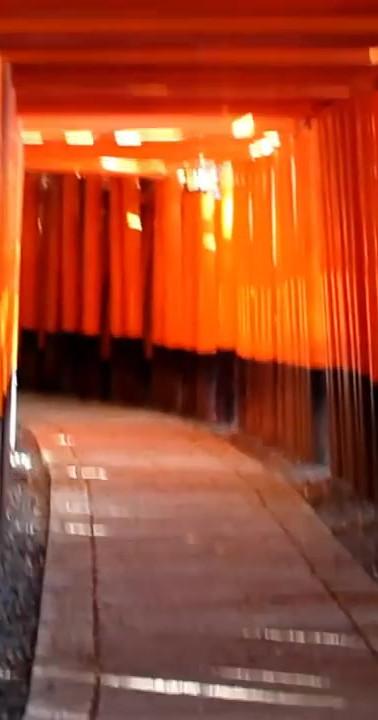 18 The Fushimi Inari-taisha Shrine