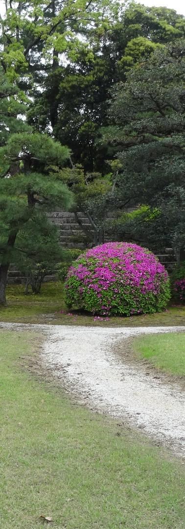 9 The Nijo Castle (Nijo-jo)